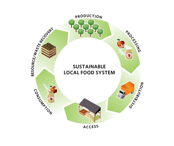 Image courtesy of  The Sustainable Cities Institute