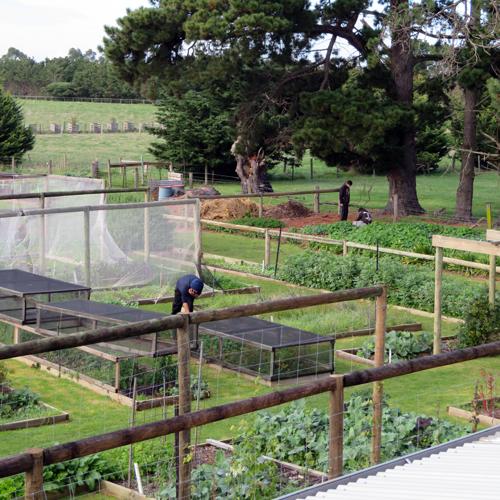 _Cardy-Farm-June-17_65.jpg