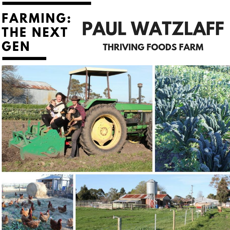 Paul is an ecological grower of nutrient dense food. - Paul's passion for farming began in India, and on his return to his hometown of Sydney he started growing veg in his backyard, and soon after leased a paddock and started farming on a commercial scale.Paul and his partner Clare moved to Koo Wee Rup in 2016, and founded the awesome and aptly named @thrivingfoodsfarm.This passionate young family take their values of ethical, sustainable, local, nutritious and delicious food very seriously and love offering their produce to customers directly, sharing stories and recipes on a weekly basis.