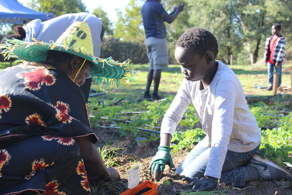 United Africa Community Farm April 2019 Working Bee