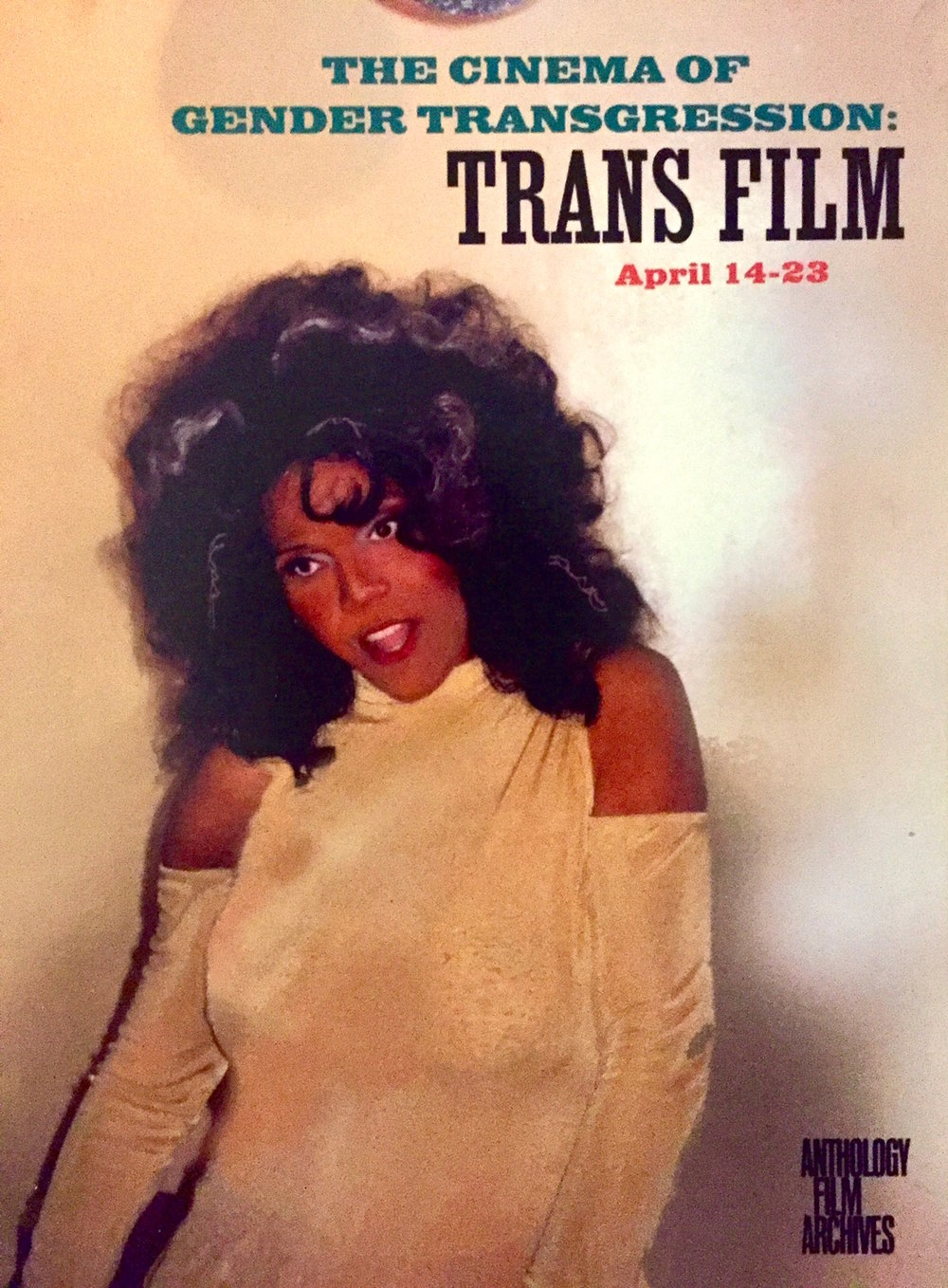 Go to: works -> the cinema of gender transgression