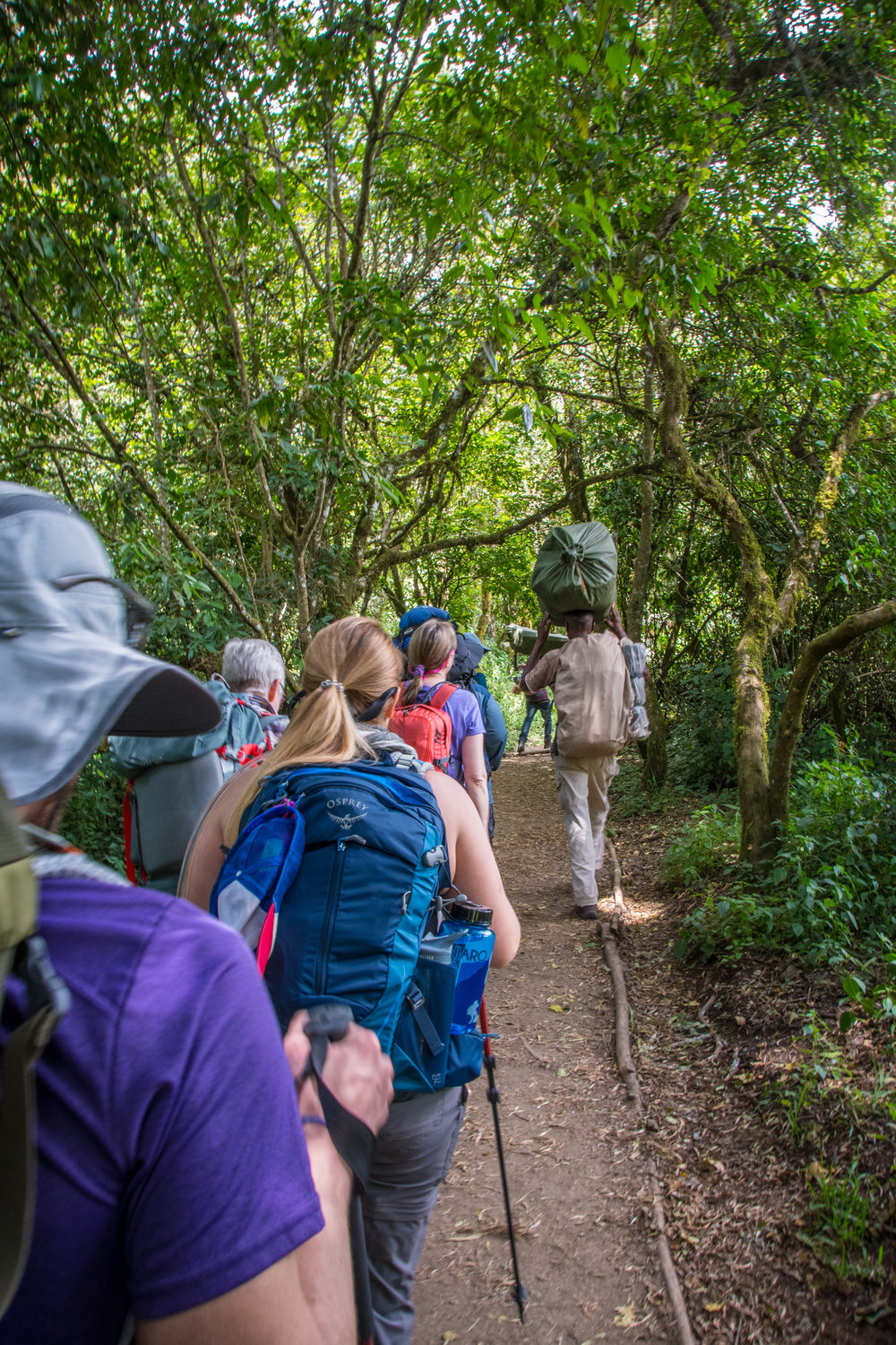 Our group hiking in the Jungle Zone