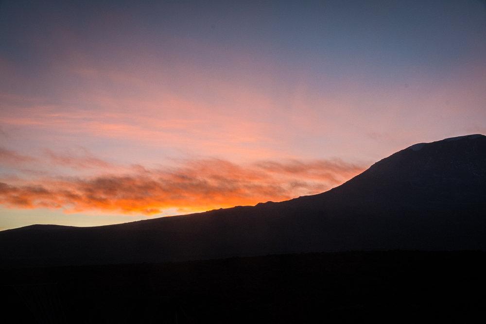 Sunrise over Kilimanjaro from Shira II Camp