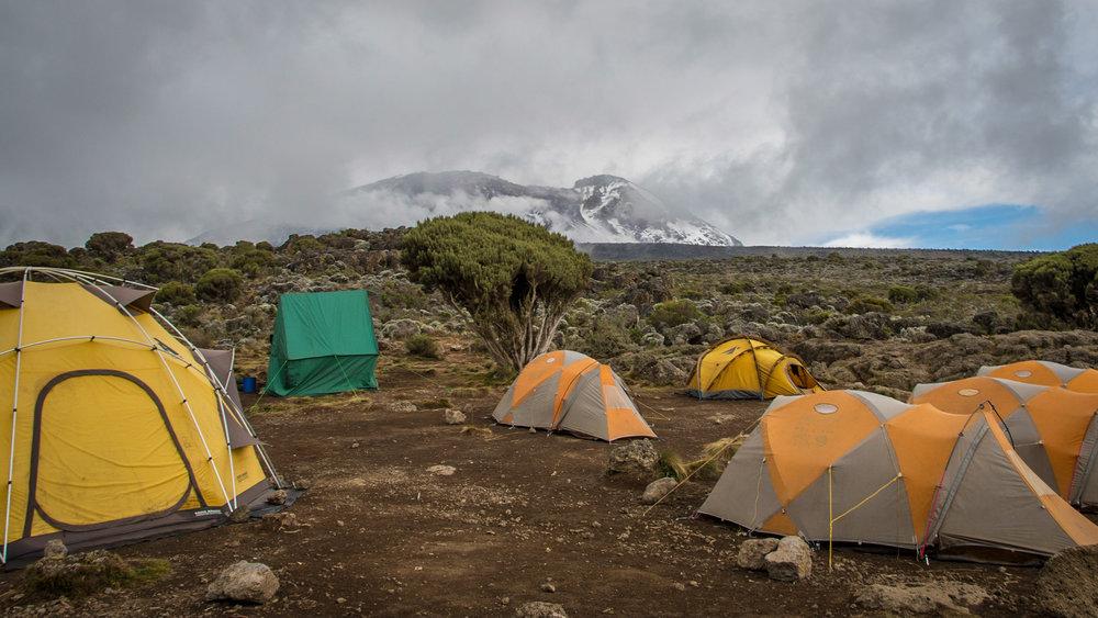 Our camp at Shira I