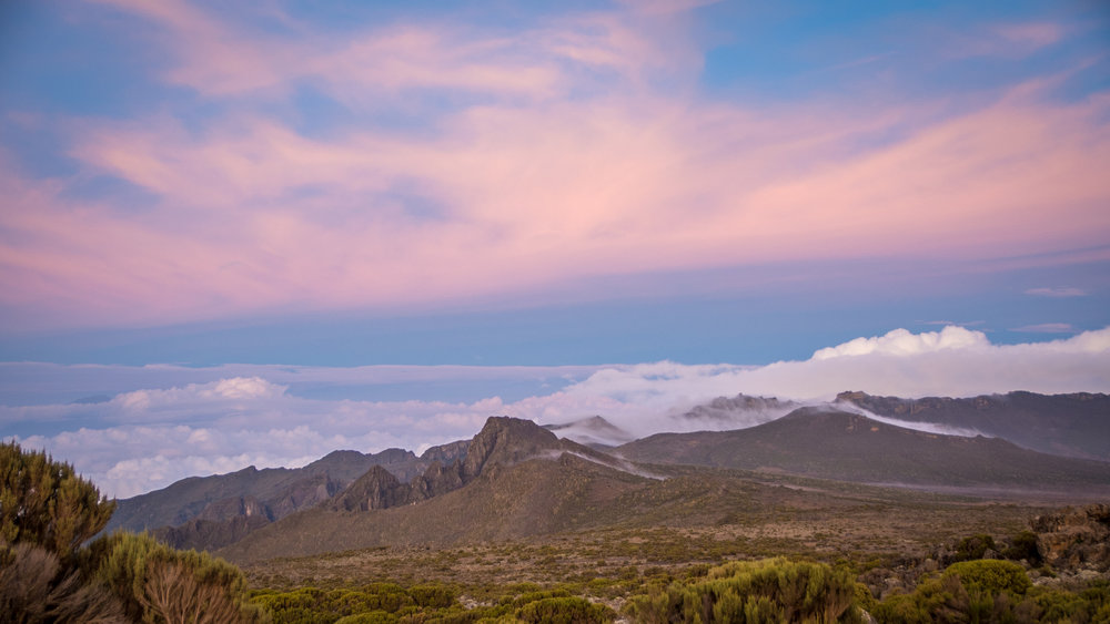 View from Shira II (Looking away from Kilimanjaro)