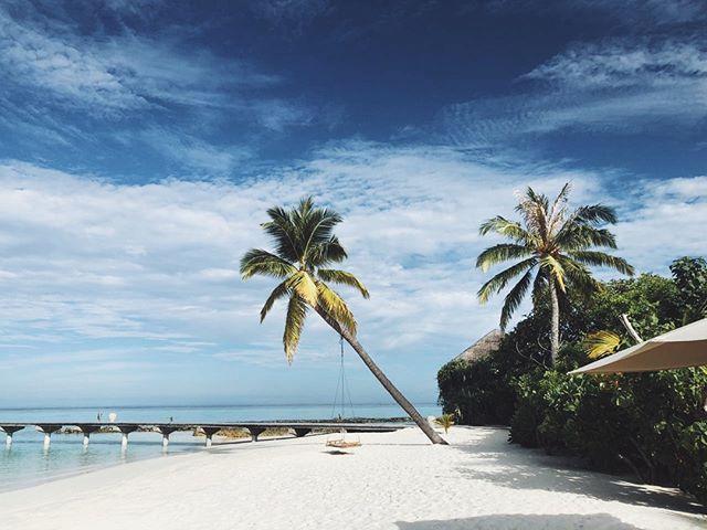 Bliss 😌  #DriftRetreat #Maldives