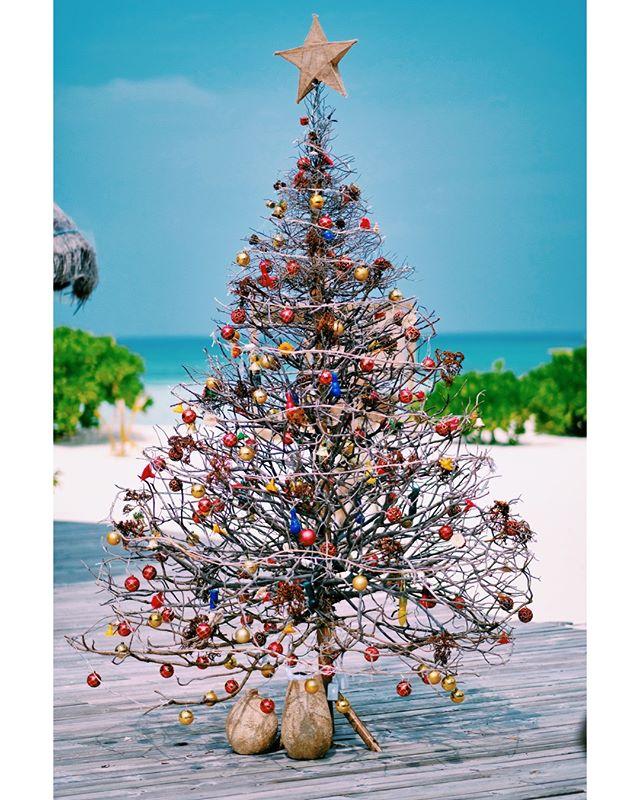 Merry Christmas from Drift Retreat! 🎄🎄🎄 #Maldives #DriftRetreat