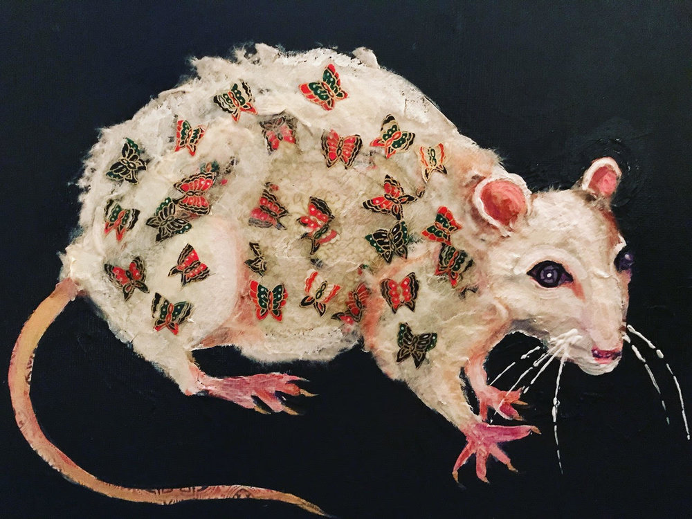 <strong>Rat</strong>