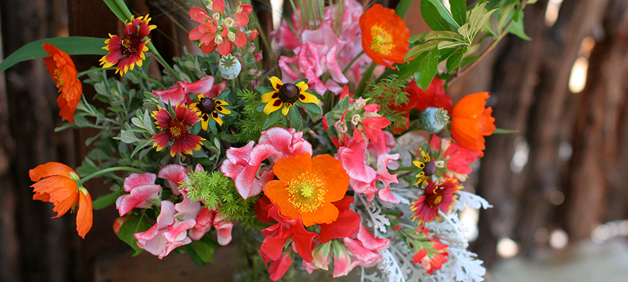 Austin-florist-quick-local-deliveries-flowers