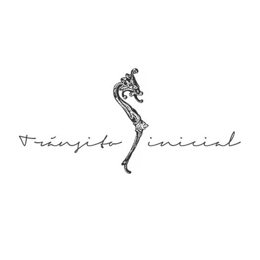 transito_inicial.jpg