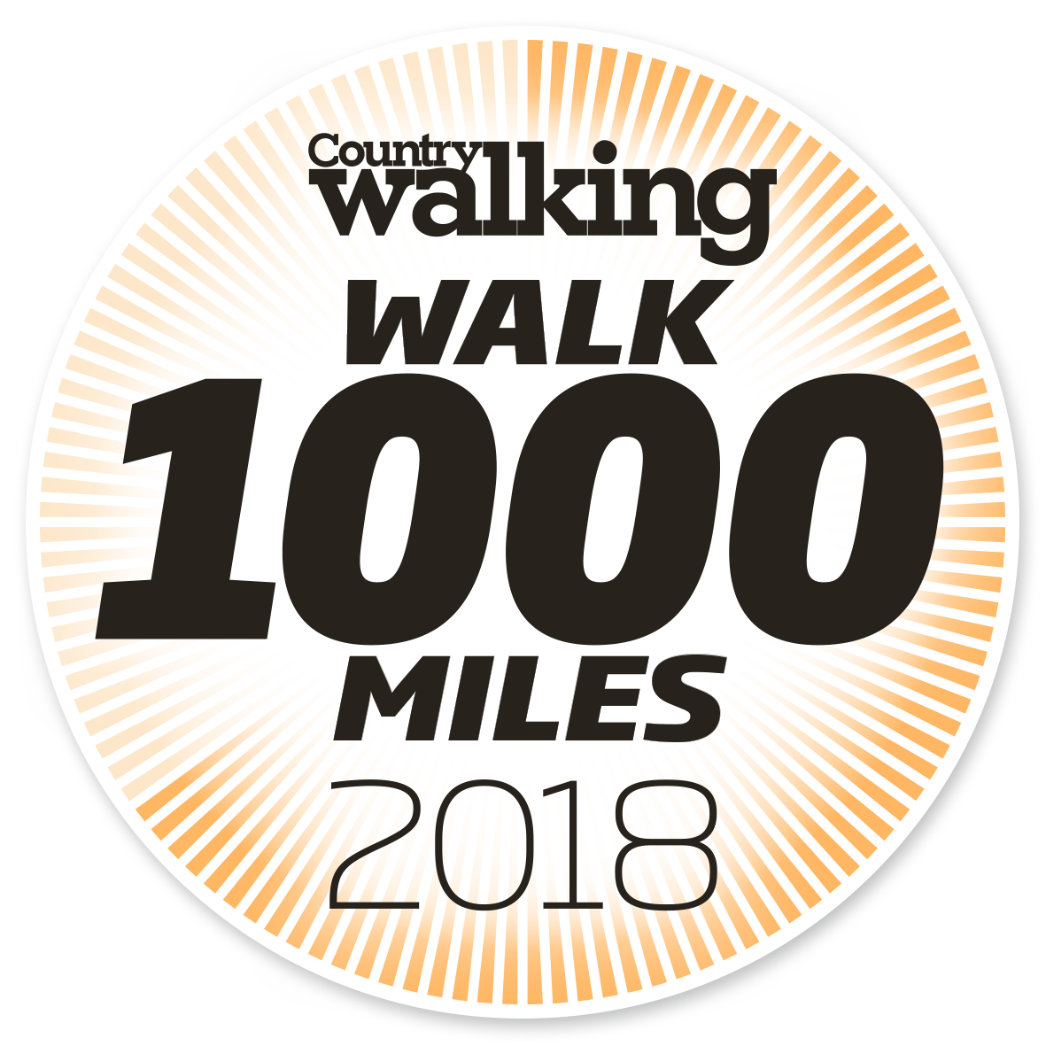 Image result for walk1000miles