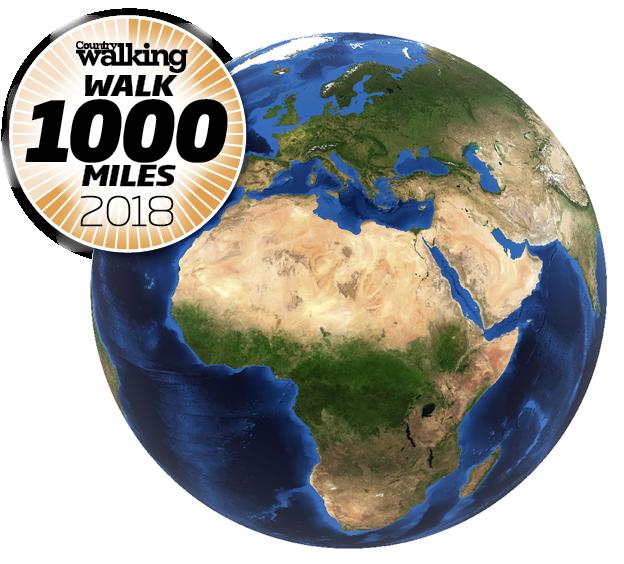 W1000Miles Globe.png