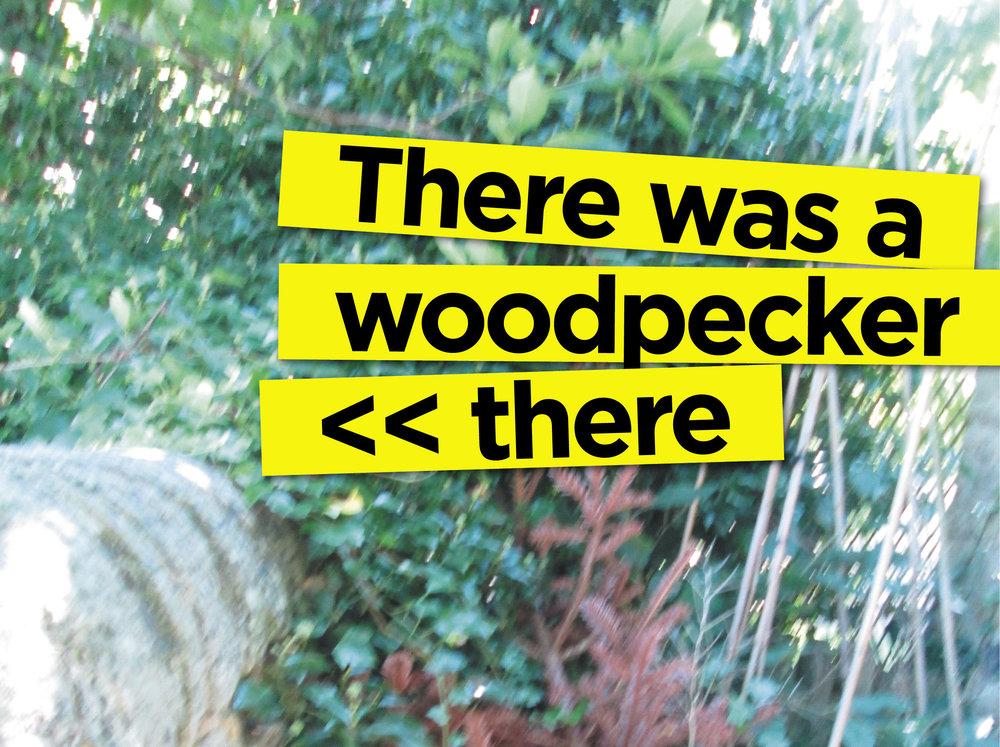Woopecl.jpg