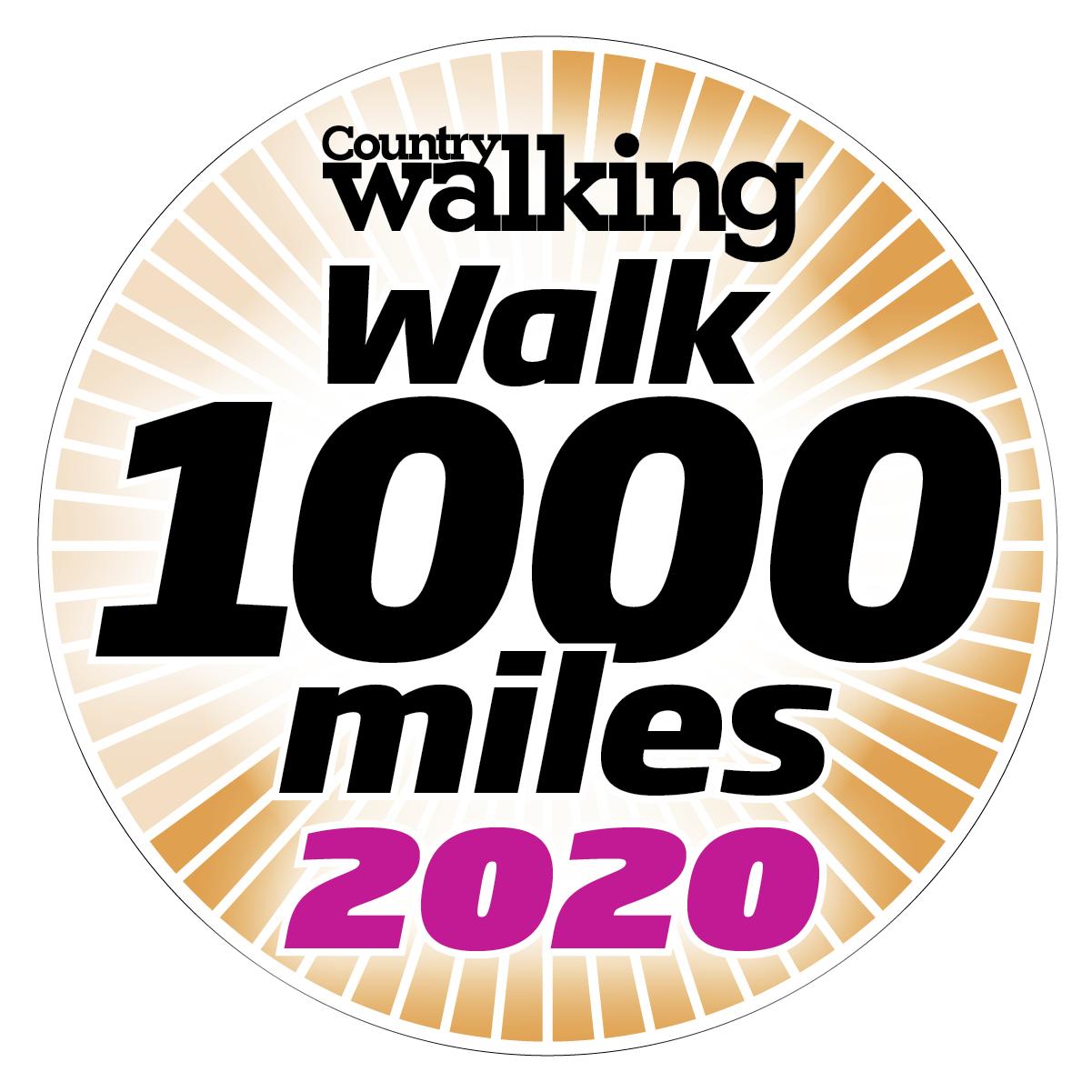 Image result for #walk1000miles