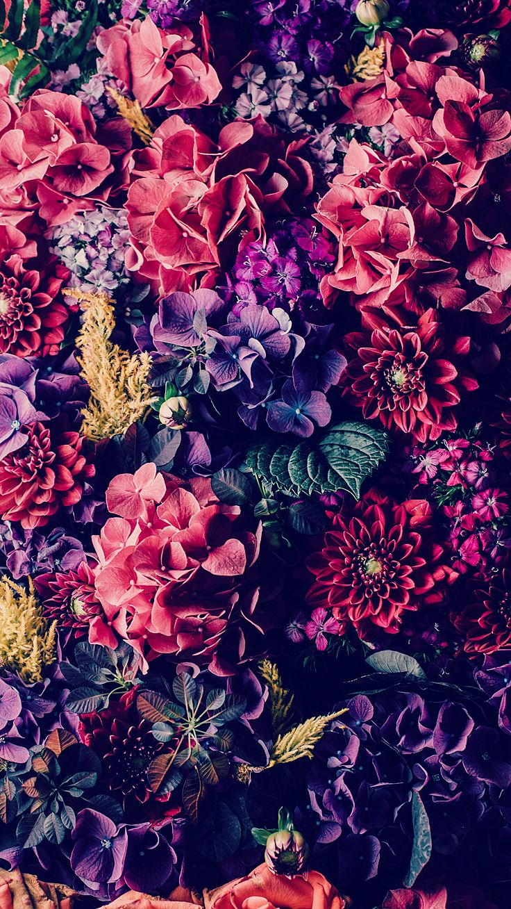 1faac19109da7ea33db3051ce037d7c7--vintage-flowers-wallpaper-flower-iphone-wallpaper.jpg