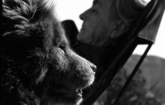 Georgia O'Keeffe and her Chow. (Photographer John Leongard)
