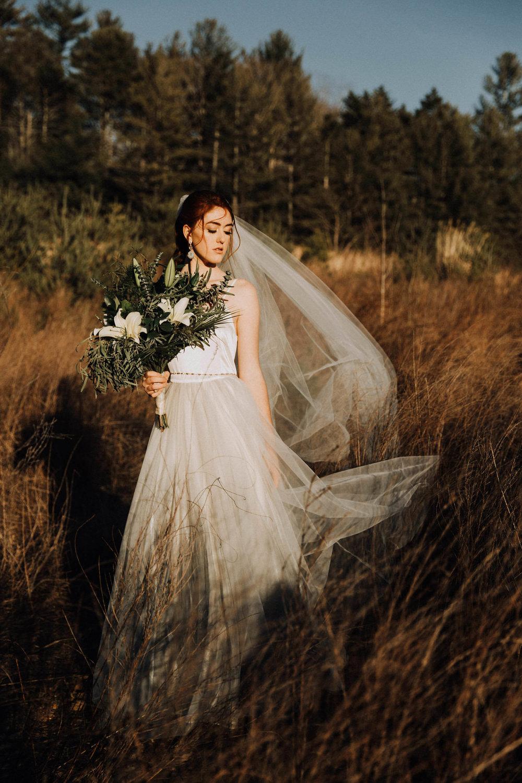 Taylor Anne Photography IMG-7763.jpeg