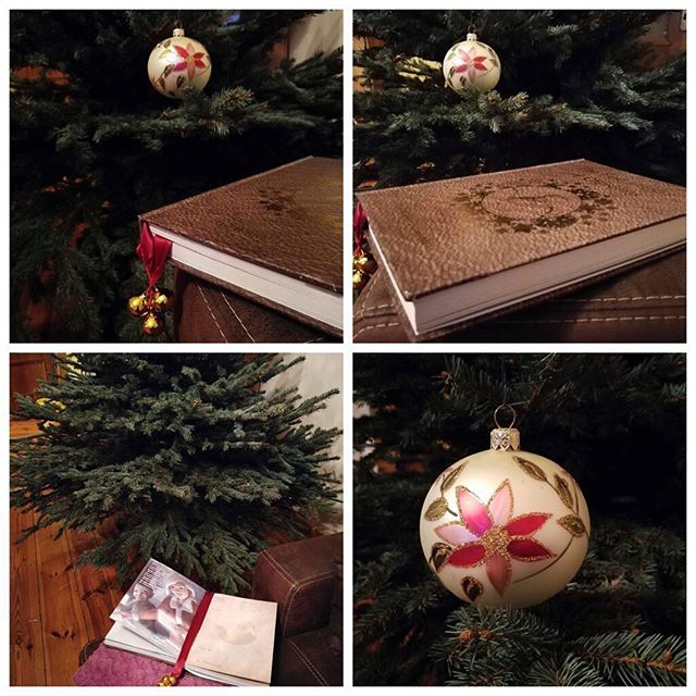 Just a reminder today is the last day for standard delivery orders. #bookish #booknow #bookcover #bookworm #bookslover #lastpost #christmastree #christmas #christmasiscoming #christmaseve #christmaslights #christmasgift #santaclaus #santa #giftshop #giftidea #gift #mum #dads