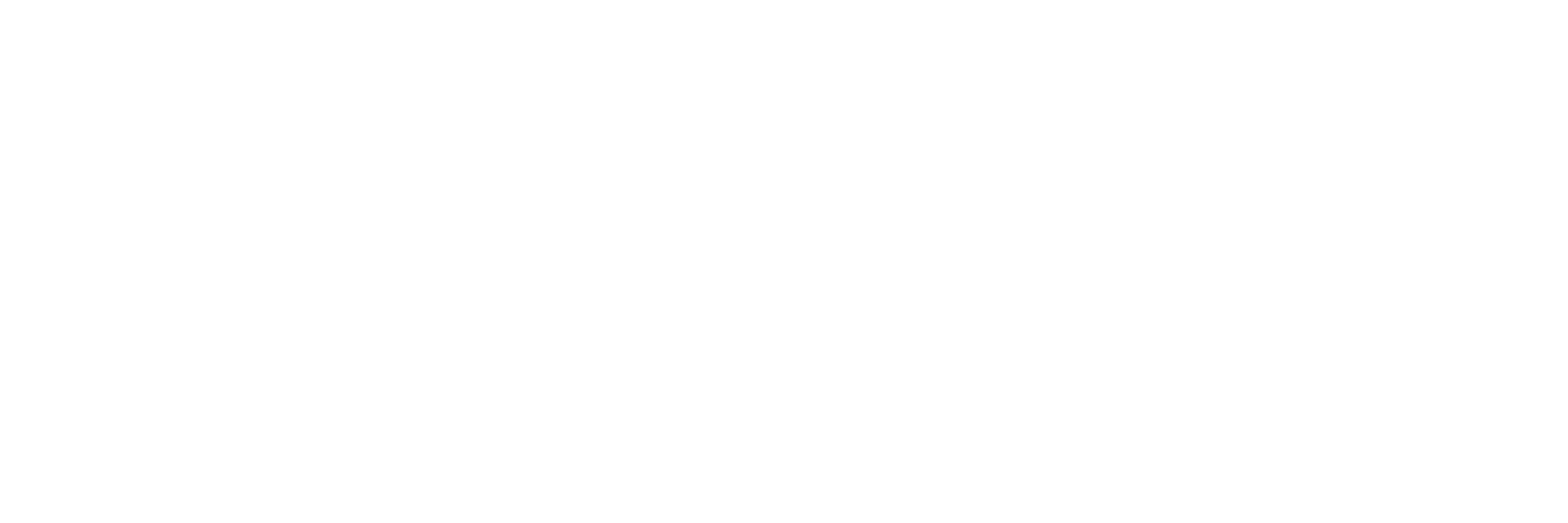 The Sathyam Project