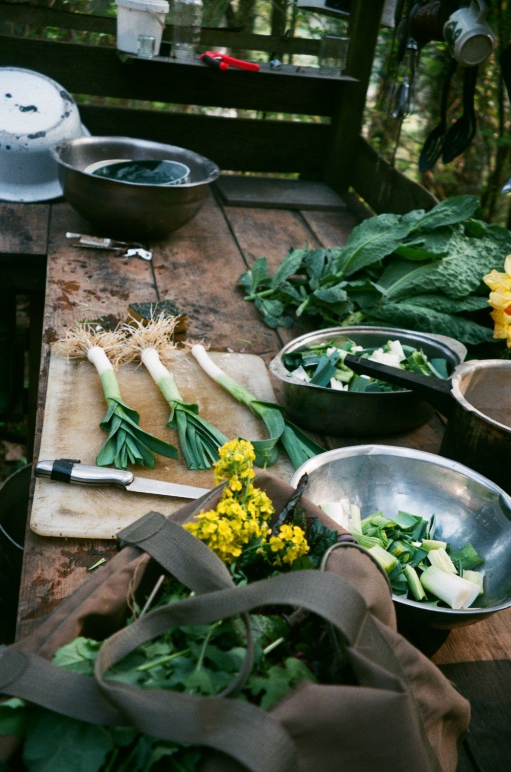 Freshly picked organic leeks grown by Laura and Sophia .JPG