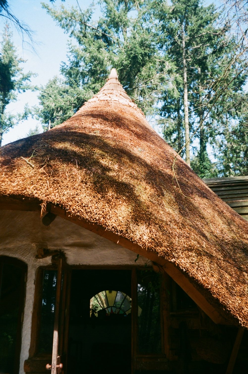 thatched roundhouse roof.JPG
