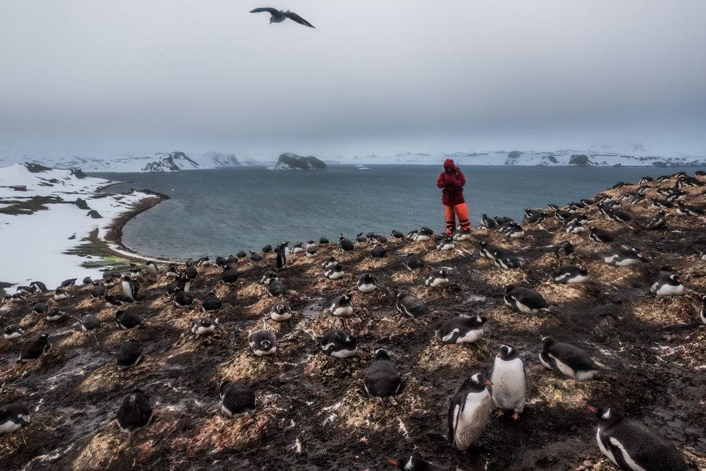 2015_12_07_DB_Antarctica_11898.jpg