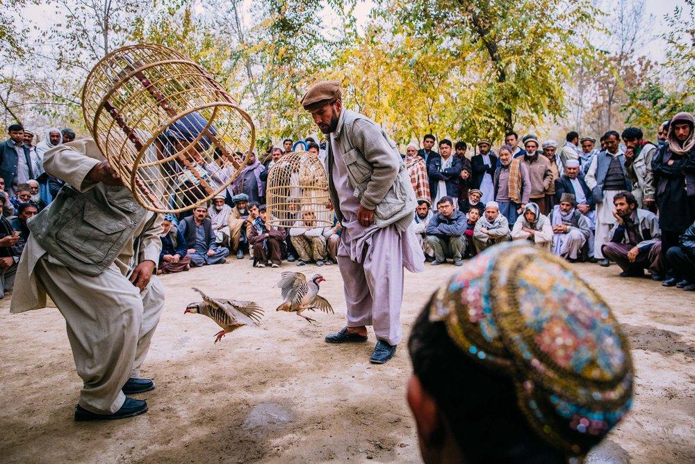 2012_11_16_DB_Afghan_1512.jpg