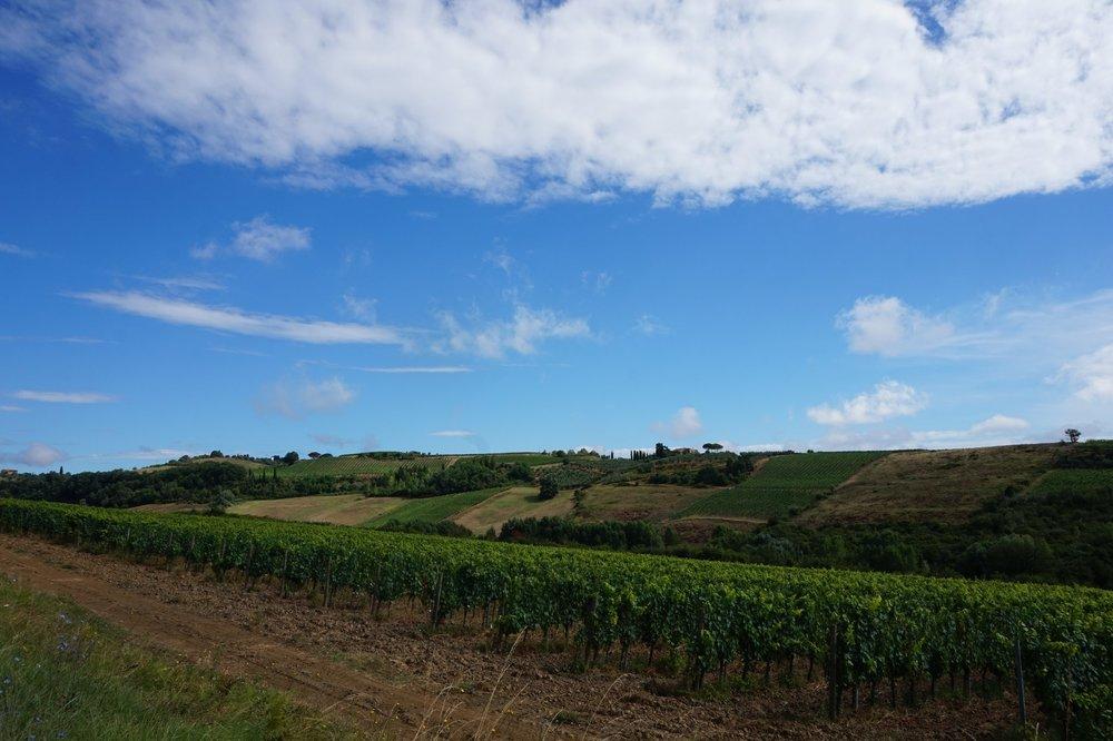 travel italy tuscany explore walk hike vines wine chianti vineyard honeymoon