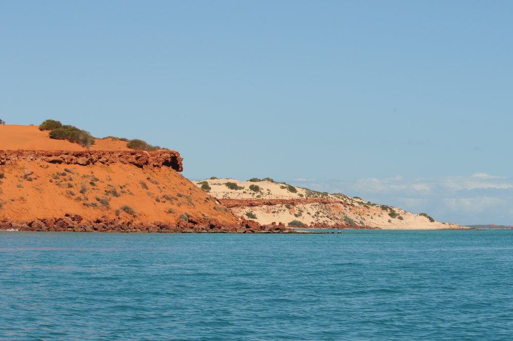 Contrasting bluffs at the top of Peron Peninsula  ©The Dolphin Alliance Project