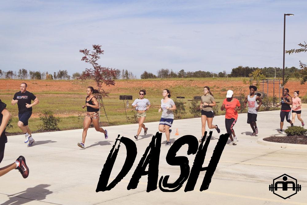 Dash5cover.jpg