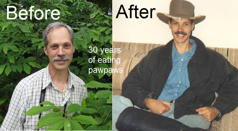 """before and after - the elixir of pawpaws"""