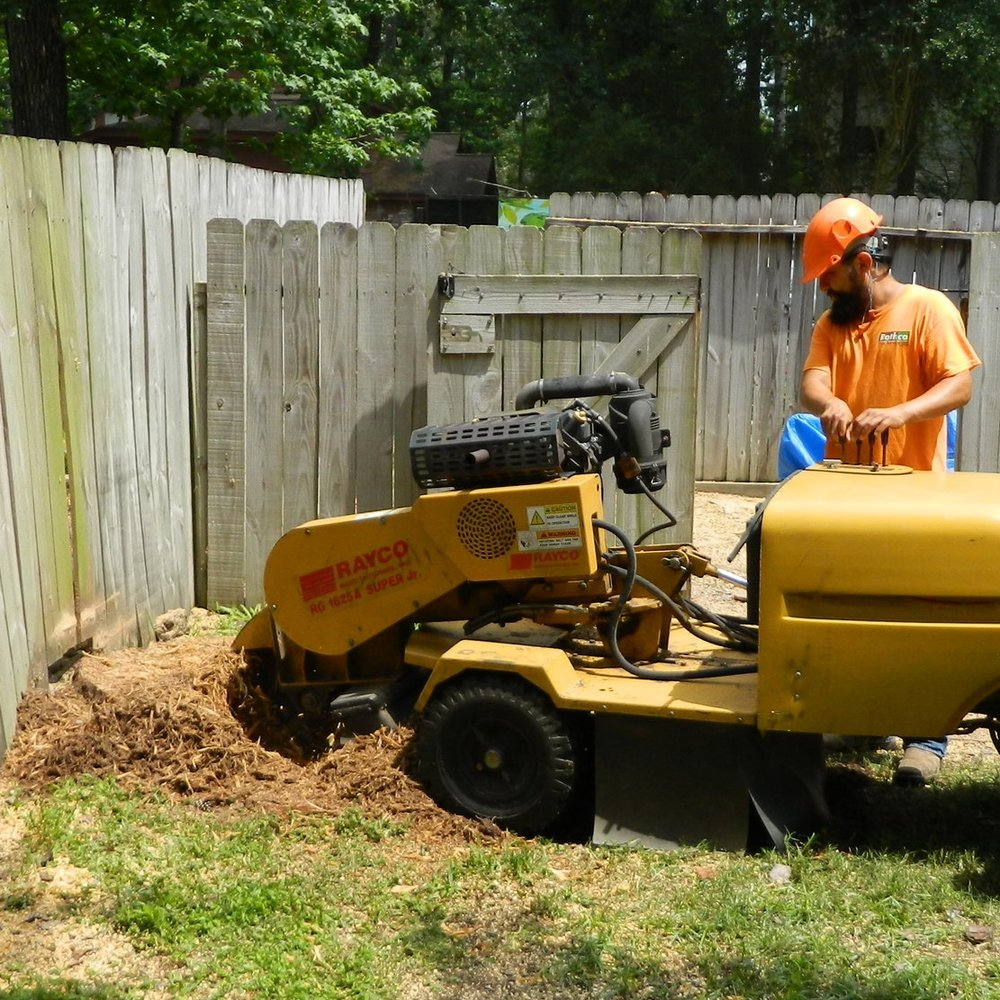 Stump grinding root removal  77301 77382 77385