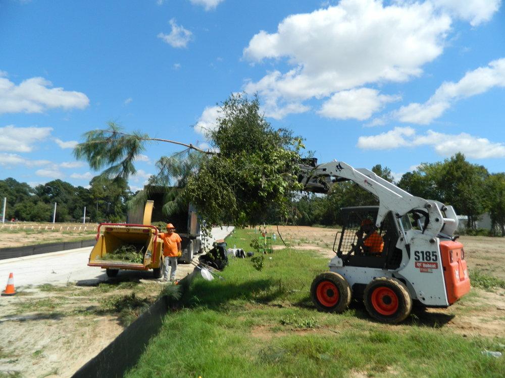 underbrush remove hydro ax woodlands conroe magnolia