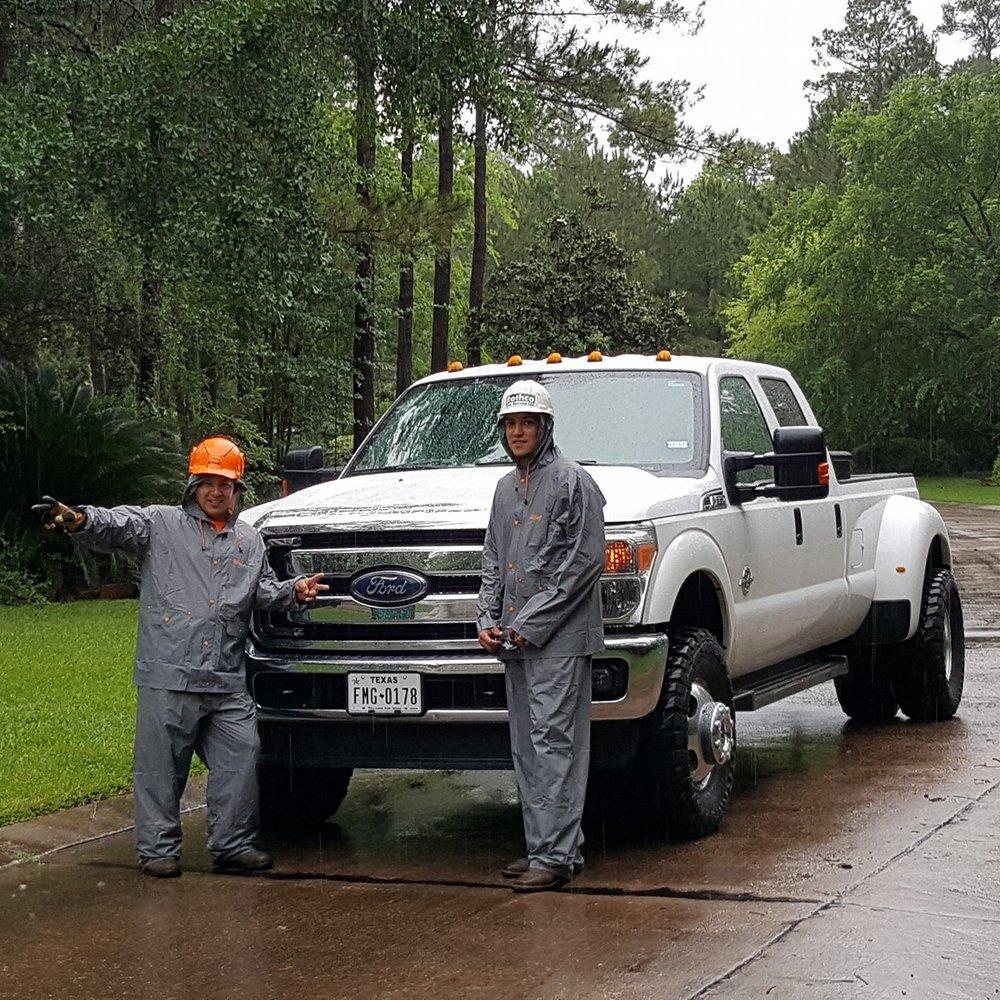 tree service in the rain