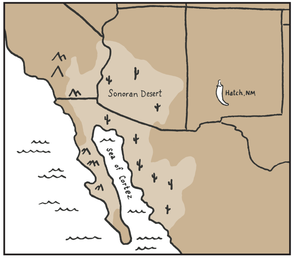 Desert-Provisions-map.png
