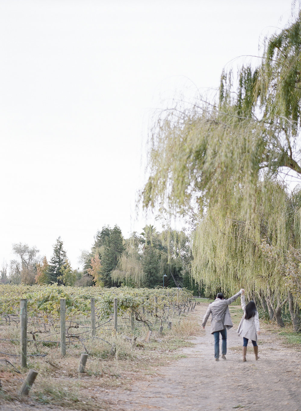 Napa Valley Engagement Session 124.jpg