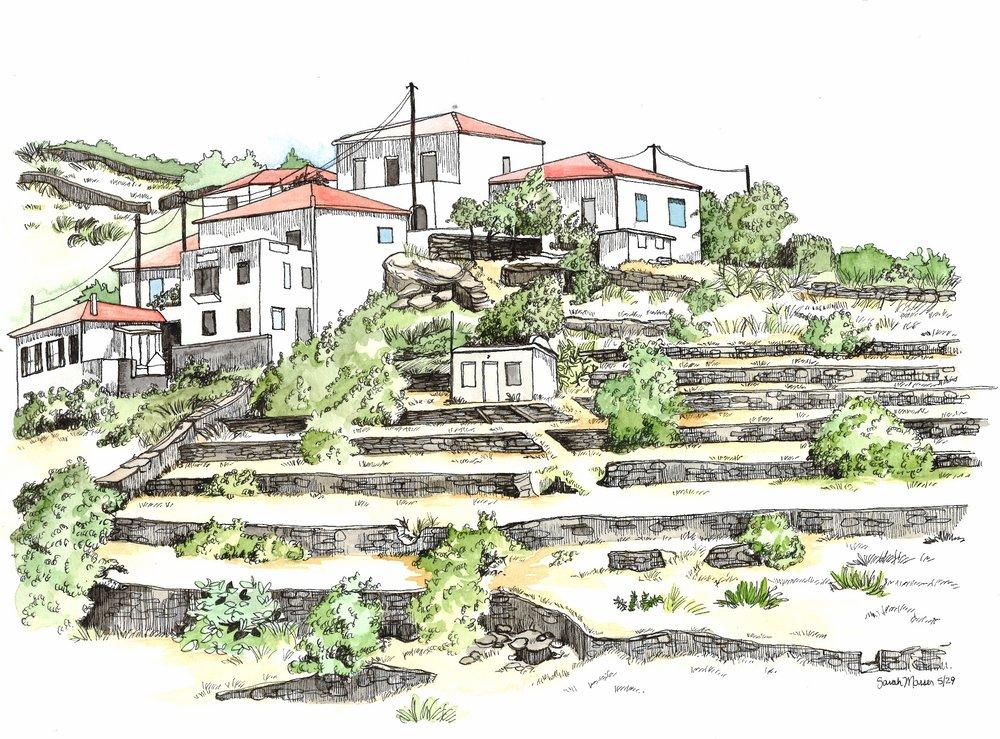 house illustration polemis 053017.jpg