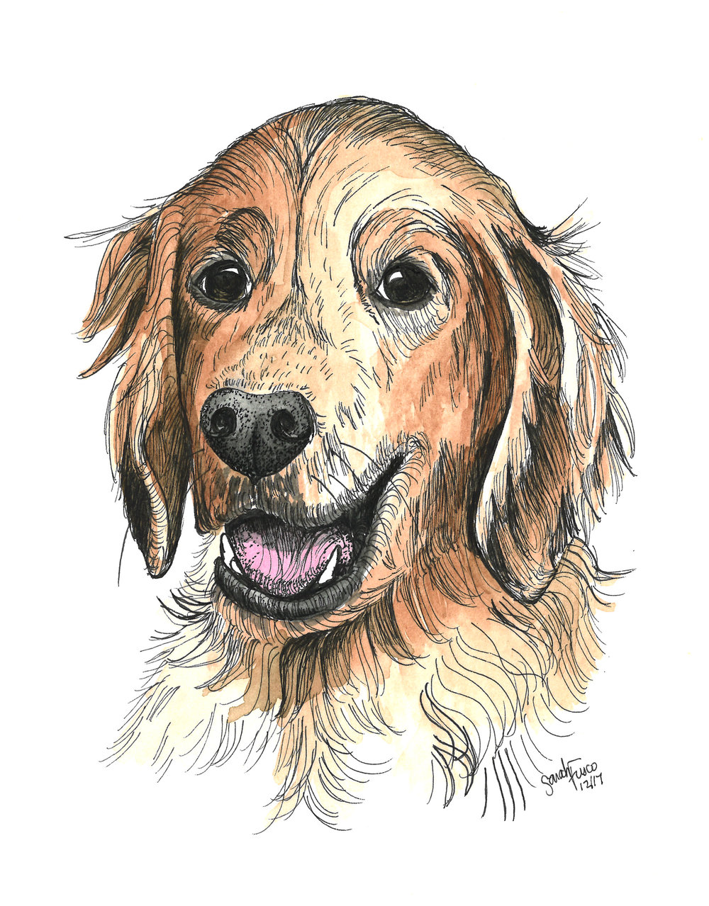 dog illustration.jpg