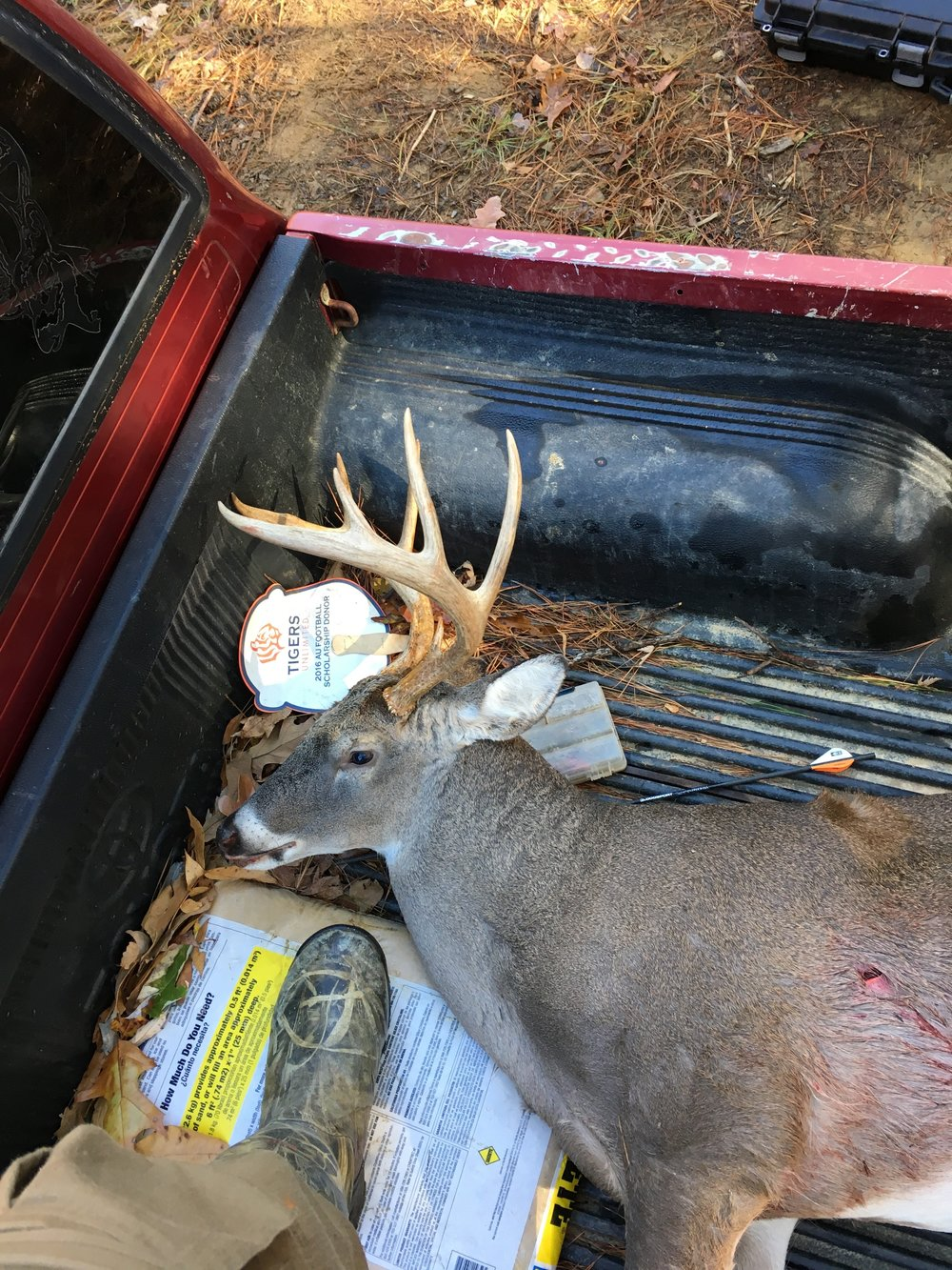 My friends buck