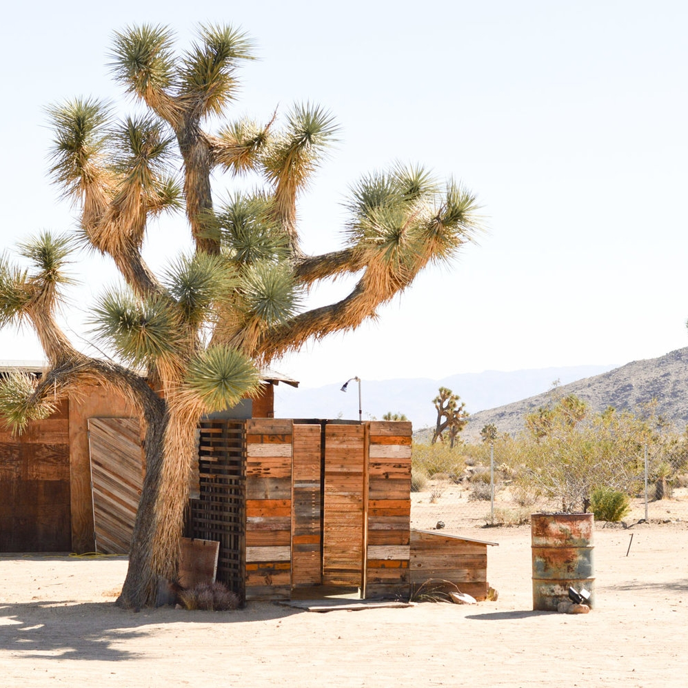 JOSHUA TREE - Joshua Tree is a must on any Westbound road trip, especially as the boutique hotel scene grows. We love how the architecture is nestled into the desert there!