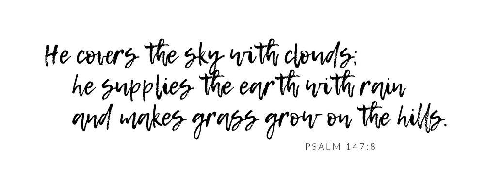 Psalm 147:8