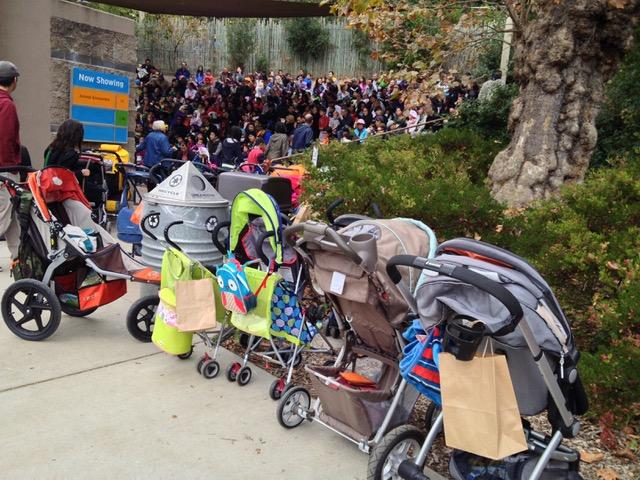 Oakland Zoo Wildlife Amphitheatre