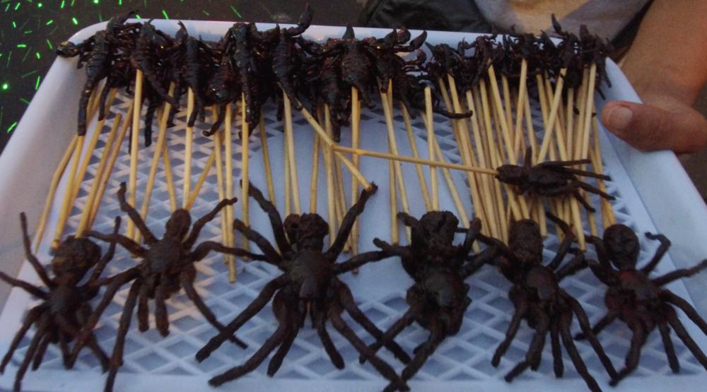 A tray full of fried scorpions and tarantulas in Bangkok, Thailand. Credit Mallory Lindsay