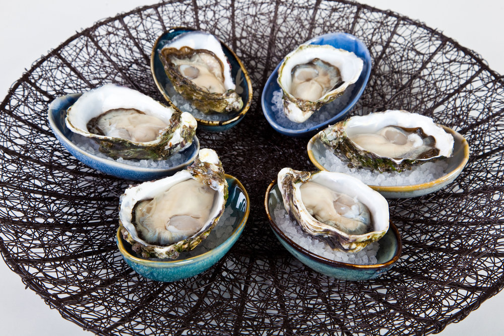 Pure Perfections Oysters