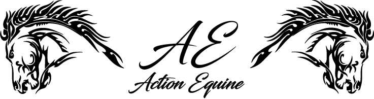 Action Equine, LLC