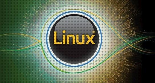 IBM Linux logo-stylised.png