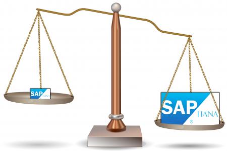 SAP_HANA_Scale-450x300.png