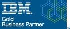 IBM Gold Partner.jpg