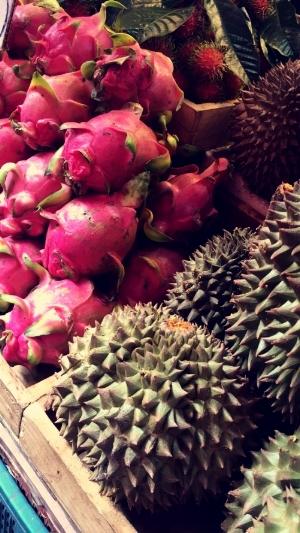 Pitaya and Durio fruits at the street markets.