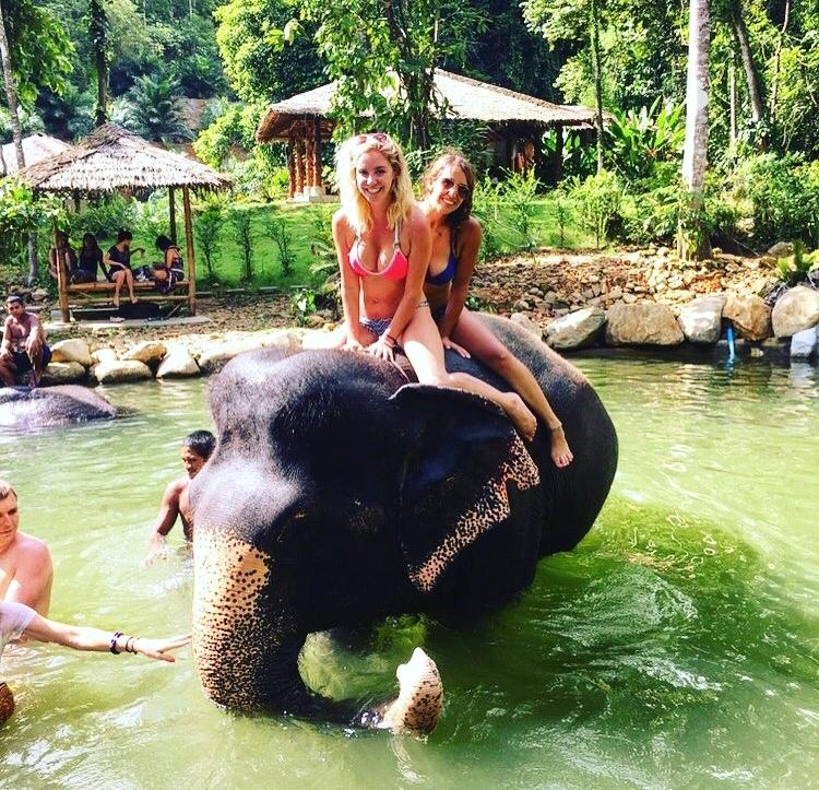 Phang Nga Bay Elephant Park Phuket